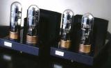 Amplificateur mono Kronzilla DX